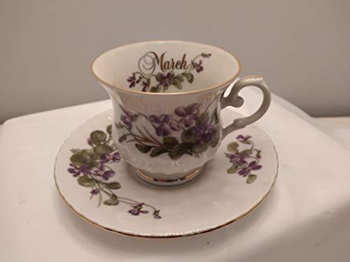 Taza de té cc200 con platillo 14 cm .Marzo 'Violets'. Royal China – SeLTMANN WEIDEN BAVARIA colección Vintage