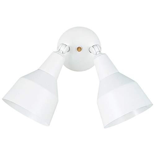 Sea Gull Lighting 8607-15 Flood Light Outside Fixture, Two, White
