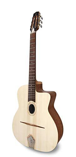 APC Instruments JM100 Jazz Gitarre