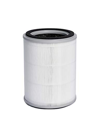 TOPPIN H13 True HEPA Air Filter Replacement Filter for TPAP001
