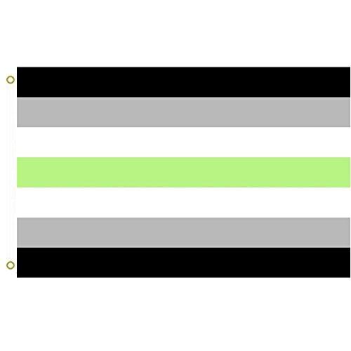 Große Flagge Agender Pride Agender Menschen Flagge Outdoor Flagge Fliegende Flagge 91 x 152 cm Banner