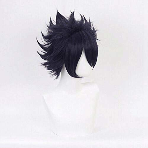 Kort zwart krullend Anime Cosplay Pruiken for mannen