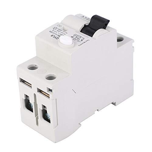 Interruptor GYL9 para Homeline for Commerce(25A)
