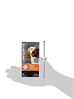 شراء Cosequin Maximum Strength Joint Supplement Plus MSM - With Glucosamine and Chondroitin - For Dogs of All Sizes