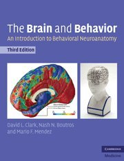 The Brain and Behavior: An Introduction to Behavioral Neuroanatomy (Cambridge Medicine (Paperback))