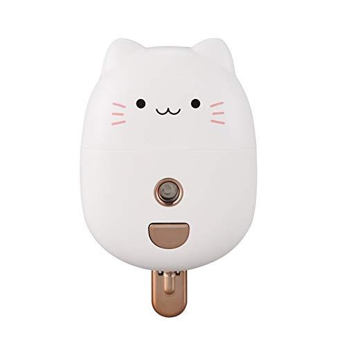 DAMAIA 40ml Nano-Spray-Hydrating-Gerät Handheld tragbarer Ladebefeuchter-Alarm (Color : White)