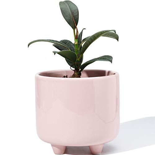 POTEY 051703 Plant Pot with Drainage Hole - 5.3 Inch Glazed Ceramic Modern Planters Indoor Bonsai Container for Plants Flower Aloe(Shiny Pink, Plants Not Included)