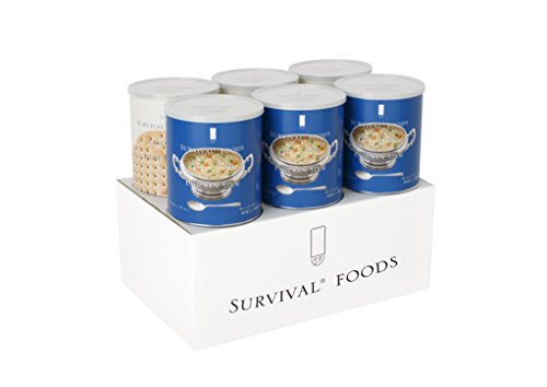 缶入り非常食詰め合わせ サバイバルフーズ 小缶 ファミリーセット チキンシチュー 1050g