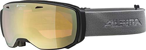 ALPINA Unisex - Erwachsene, ESTETICE QHM Skibrille, black-grey, One size