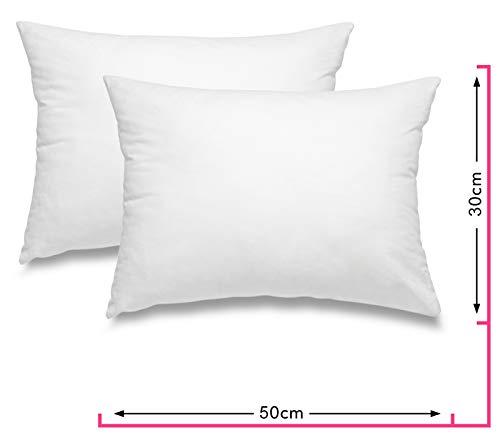 wometo 2er Set Federkissen 100% Federn 30x50 cm - 330g OekoTex Kissen Füllkissen Bezug Baumwolle weiß I Innenkissen/Kissenfüllung/kleine Kopfkissen (viele Maße) (2 Stück)