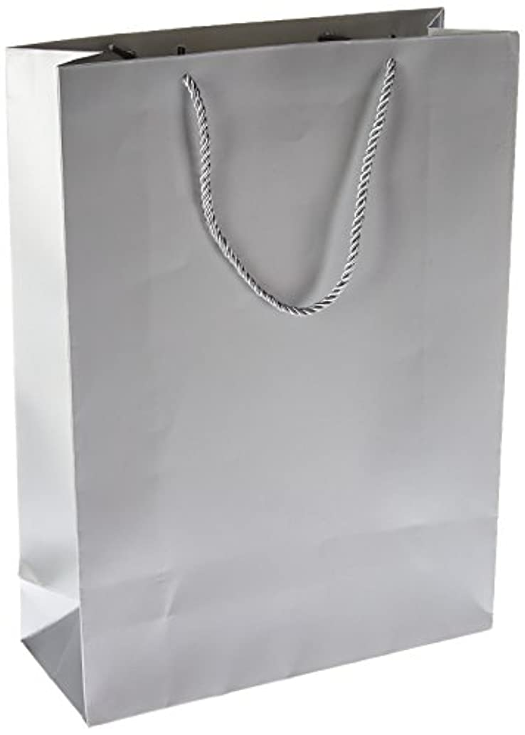 Singular Metallizing Party Gift Paper Bags Large Size (Set of 12) (Vertical(12.2