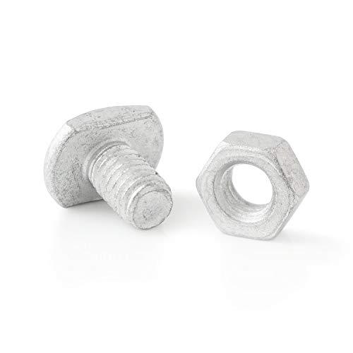 Zelsius Gewächshausschrauben (50 Stück) inkl. Muttern, Stahl korrosionsbeschichtet, Bolzen, Flachkopfschrauben, Hammerkopfschrauben für alle gängigen Gewächshäuser