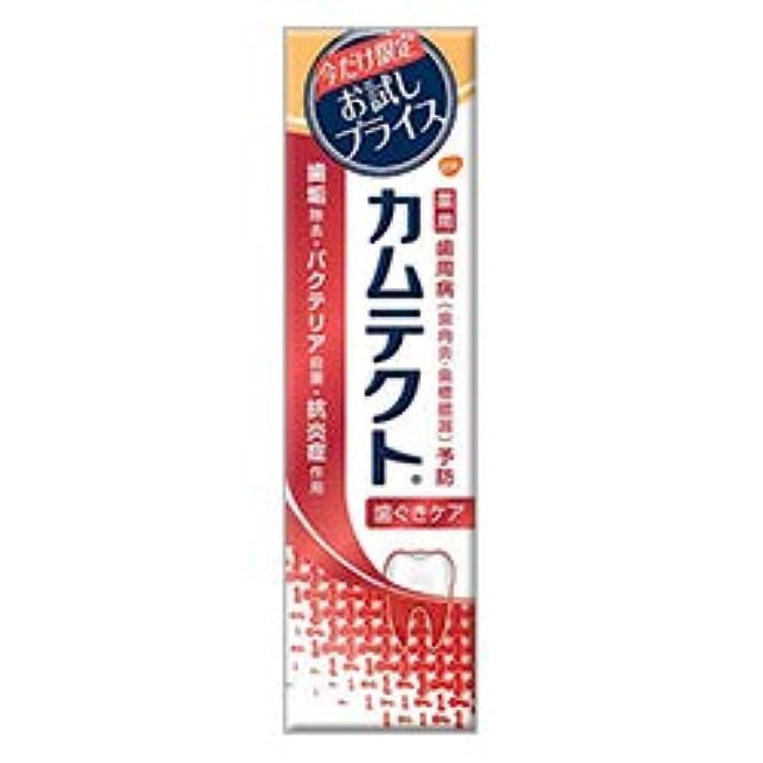 達成貧困月【アース製薬】カムテクト 歯ぐきケア 限定お試し版 105g [医薬部外品] ×4 個セット