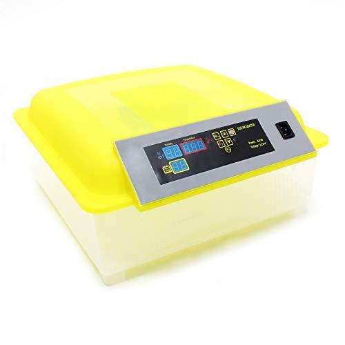 Wiltec Inkubator für Reptilieneier bis 48 Stück Flächenbrüter Brutapparat