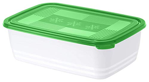 Rotho Freeze Gefrierbox 3,7l mit Deckel, Kunststoff (PP) BPA-frei, weiss/grün, 3,7l (29,5 x 20,0 x 9,2 cm)