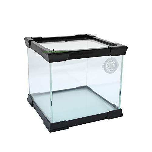 Aquarium-Plüderhausen Glas-Terrarium mit Schiebe Deckel 20x20x20 cm für kleine Reptilien, Amphibien, Insekten