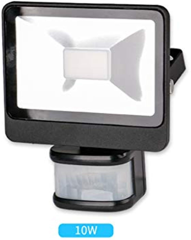 Strahler Mit,LED Mit Bewegungssensor Menschlichen Krper Infrarot Garten Im Freien Wasserdichte Arbeitslicht Wandleuchte (gre   10W)