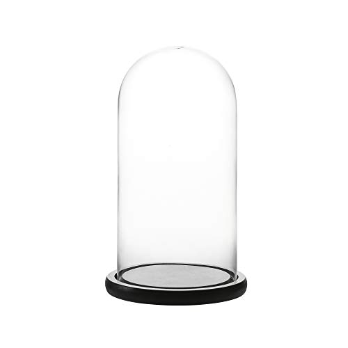 Whole Housewares Decorative Clear Glass Dome/Tabletop Centerpiece Cloche Bell Jar Display Case with Black MDF Base, 5.7' D X 10.4' H