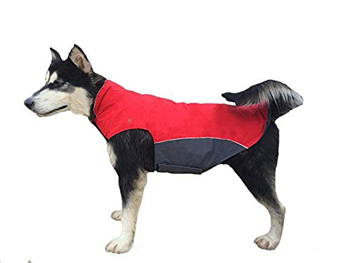 BONAWEN Waterproof Dog Coat for Winter Autumn Cold Weather Dog Jacket for Large Medium Dogs (Red,L)