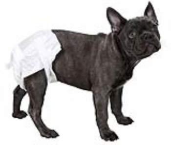 Kerbl Canine luiers, groot, 50-70 cm, 12-delig