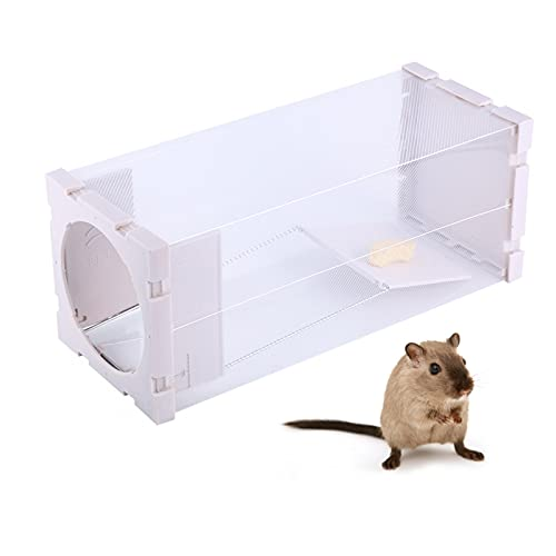 Gugxiom Jaula para Trampas para Ratas, Trampa para Ratas Humana Plegable Conveniente...