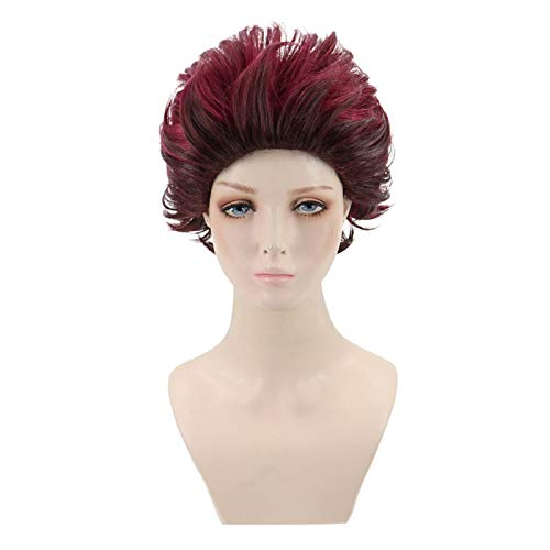 Wig, Fashion Anime Red Short Synthetic Hair Men Women Natural Looking Hairpiece Cosplay Party Hairpiece - Red