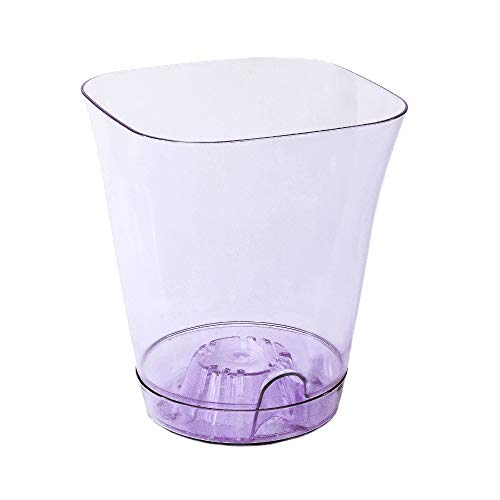 Garden4You, Clear Orchid Pot With Saucer, diameter 13.5cm (White) (Purple, 13)