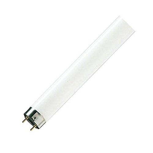 Philips Lampen Leuchtstofflampe TL-D 58W/840 EAN: 8711500632197, 1 Stück