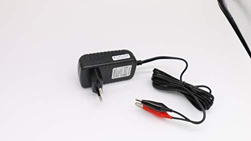Cargador de batería de Plomo 6V 2A,6V Mantenimiento automático Flotador Inteligente portátil para automóvil Coche Moto Barco Cortacésped SLA ATV AGM Gel Cell Baterías de Plomo ácido