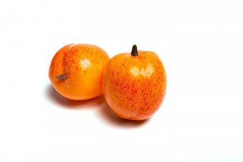 ERRO 2 Aprikosen Attrappen - 01025, Obstattrappe als Requsite, Aprikose aus Kunststoff, Lebensmittelattrappen zur Deko, Sommerdeko, Obst Nachbildung
