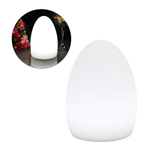 Uonlytech Lámpara de Mesa de la lámpara de Escritorio de Carga USB con luz de Noche con Forma de Huevo LED para Barra de Exterior para el hogar - 14x19cm (Estilo de Carga)