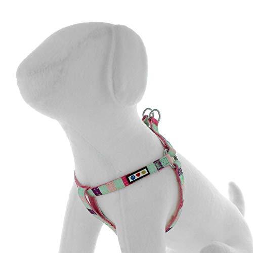 Pawtitas Multicolor Step In Dog Arnés o Chaleco de arnés Entrenamiento de su arnés para Cachorros arnés pequeño Turquesa/Rosa/Púrpura