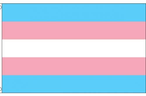 Unbekannt Flagge Fahne Regenbogen Schwul CSD Pride LGBT - Lesben - Bisexuell - Pansexuell - Transgender - Asexuell - Nicht Binär - 150x90cm - vertrieb durch ABAV (1x Transgender ZFLAG202)