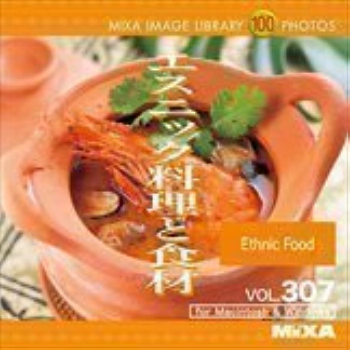 モード動物園大西洋MIXA IMAGE LIBRARY Vol.307 エスニック料理と食材