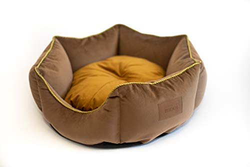 MOOI Hundebett Hundesofa Waschbar Hundekörbchen Exklusiv Katzenbett Haustierbett Hundekissen für kleine mittlere große Hunde I Crown I Gold I L