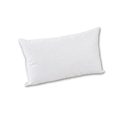 Coussin de canapé 60 cm x 80 cm - Plumes et plumes de classe VII 700 g, blanc