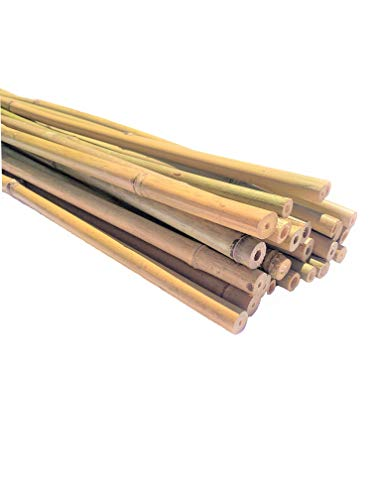 """Dlh Western Natural Bamboo Poles 4ft Long, Average Diameter of 1/2"""" (25-Count)"""