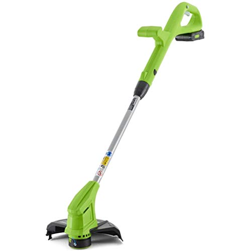 Greenworks Tools Coupe-bordures sans fil G24LTK2...