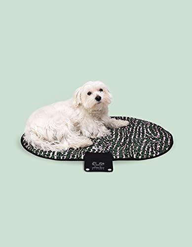 United Pets Lazy Dog Mat - Cuccia Portatile per Cani Pieghevole, Cuccia da Ristorante E da Viaggio, Tappetino Cuccia Leggero, Colore Verde Rosa - 100 g