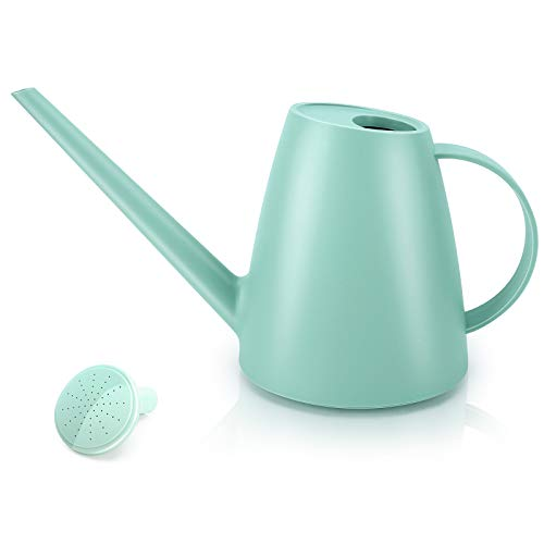Qilebi Watering Can for Indoor Plants, Small Watering Cans for House Plant Garden Flower, Long Spout Water Can for Outdoor Watering Plants 1.8L 60oz 1/2 Gallon (Green)