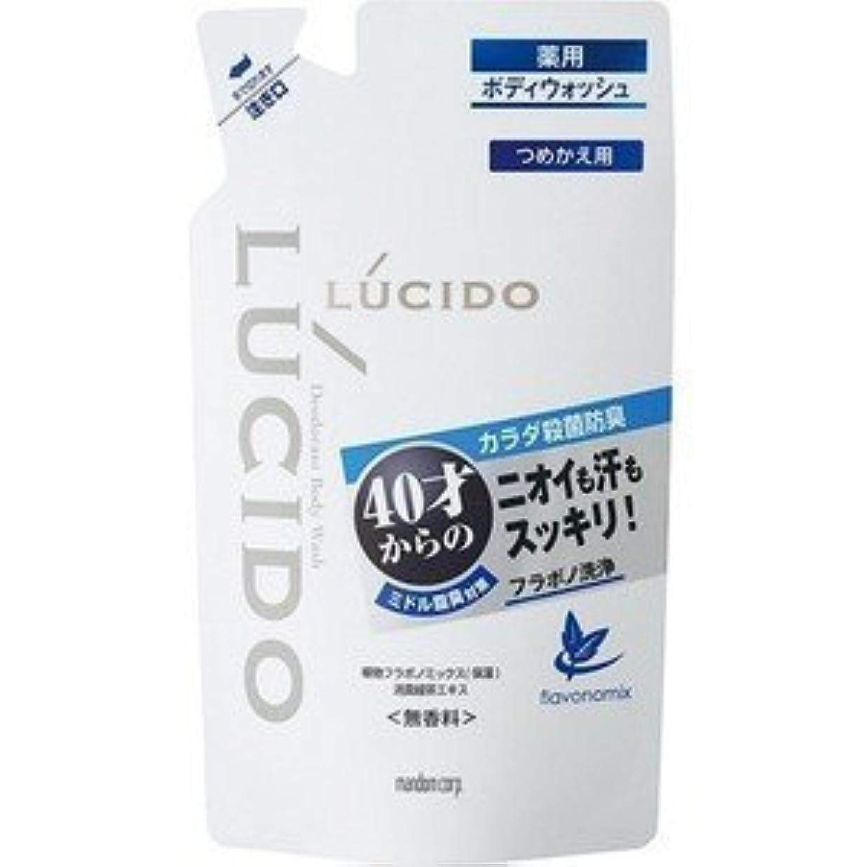 以上一節午後【LUCIDO】ルシード 薬用デオドラントボディウォッシュ つめかえ用 380ml(医薬部外品)