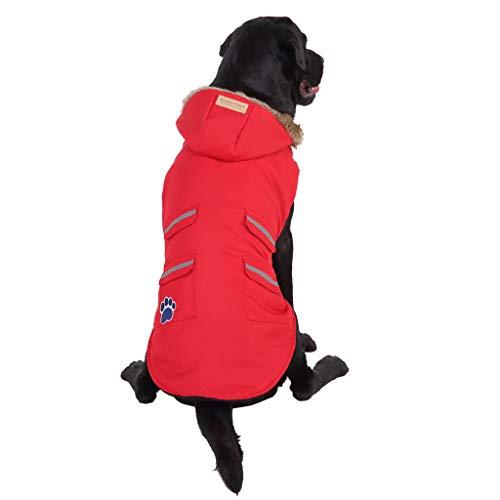 Allegorly Mittlere Hunde und Grosse Hunde Sport Kapuzenpullis Hoodies Sweatshirt Mantel Jumpsuit Haustier Kleidung Pullover Hundestrickjacke Hundemantel Outwear