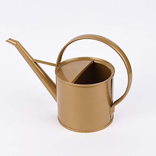 Mooi leven. Decoratieve gieter trend metaal verzinkt goudkleurig 35x15,5 cm
