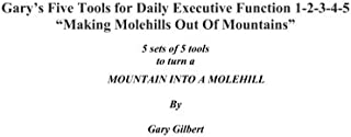 Gary's Five Tools for Executive Function ~ 1-2-3-4-5 ~: Making molehills out of mountains