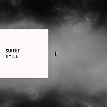 # 1 Album: Sweet Still