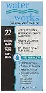 Water Works Permanent Powder Hair Color - #22 Brown Black 0.2 oz. (Pack of 2)