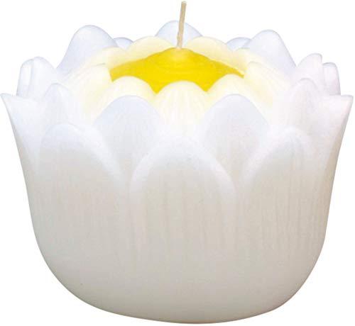 マルエス ろうそく 蓮の花 大 24時間 長時間 ハス ホワイト 箱入り 約9×9×6.5cm