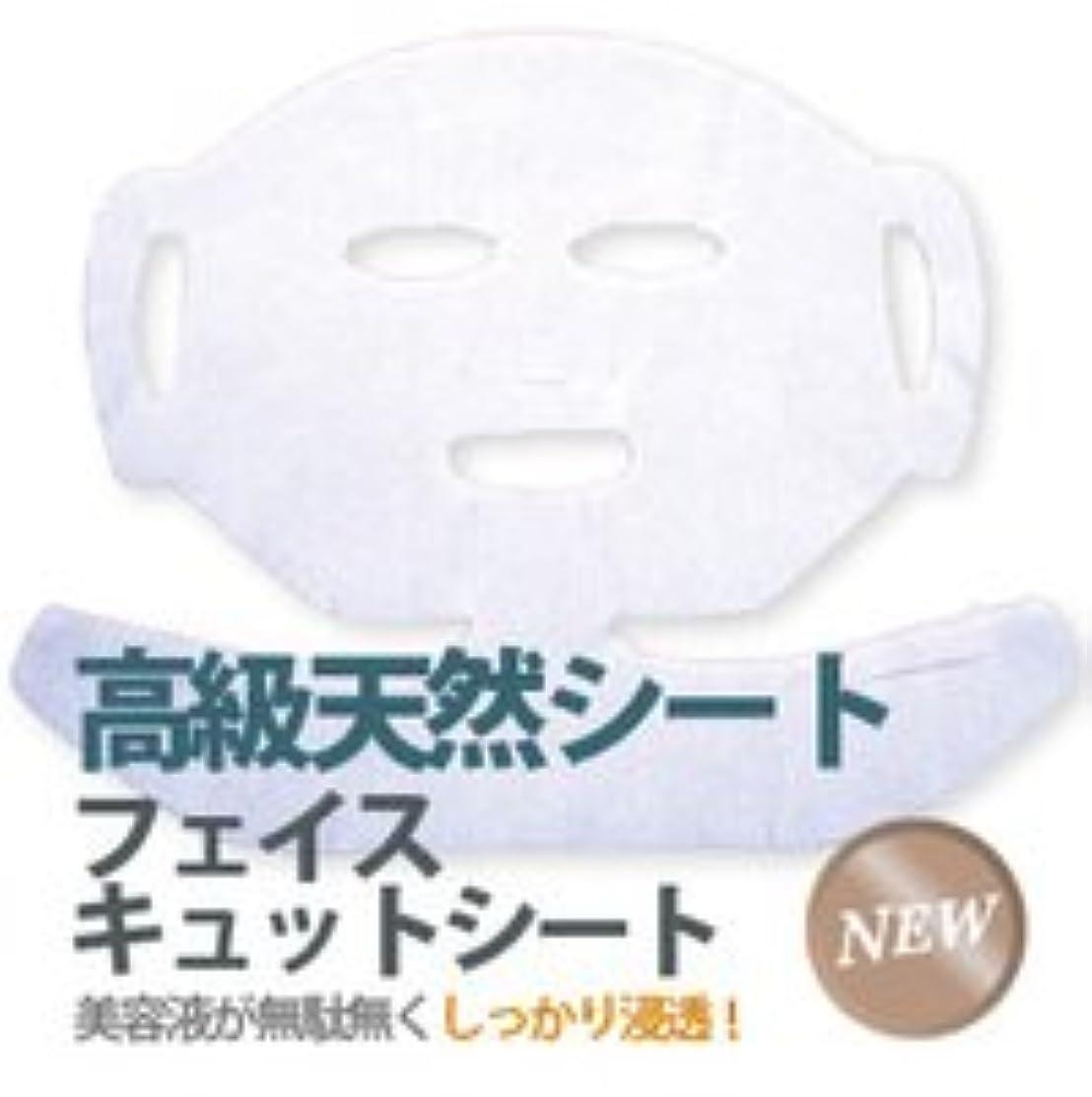 創造しっとり不愉快にフェイスキュットシート 【100枚入】