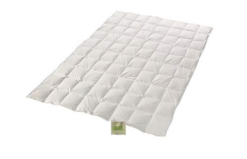 Öko Daune Sommerdecke 100% Daune recycelt nachhaltig ökologisch wertvoll Steppdecke vom Betten Fachgeschäft (200x220 cm) Klimaneutrales Produkt