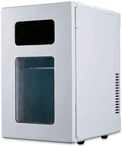 Koelbox auto koelkast, 10 l mini car koelkast thermo-elektrische koelbox met wielen Mobility Mini auto koelkast voor op reis camping picknick 12V DC / 220V AC dljyy